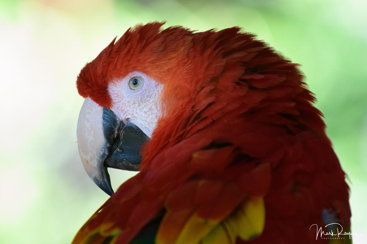 20180602 111542 Australia Zoo