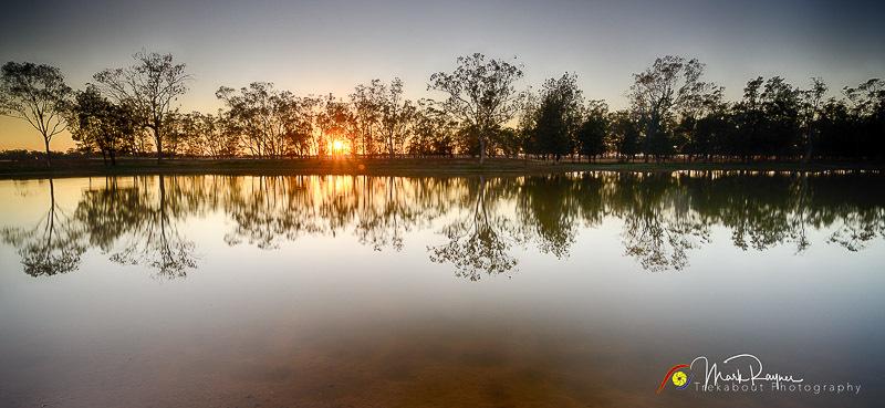 Wildlife Birds Landscape Outback Queensland-1-43