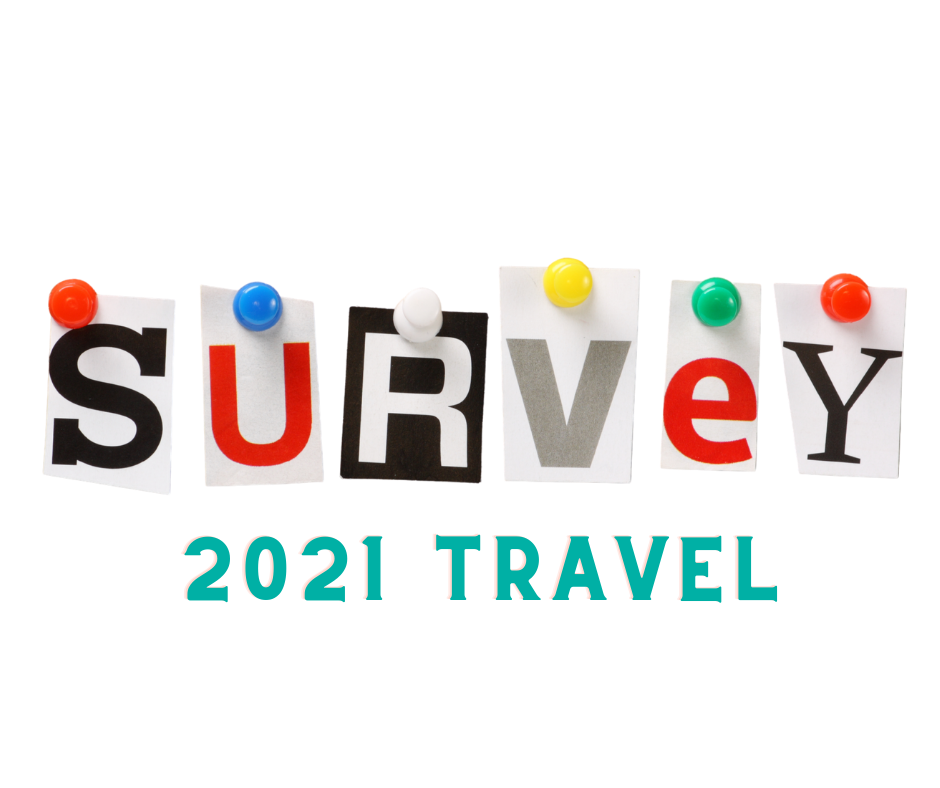 2021 Travel survey