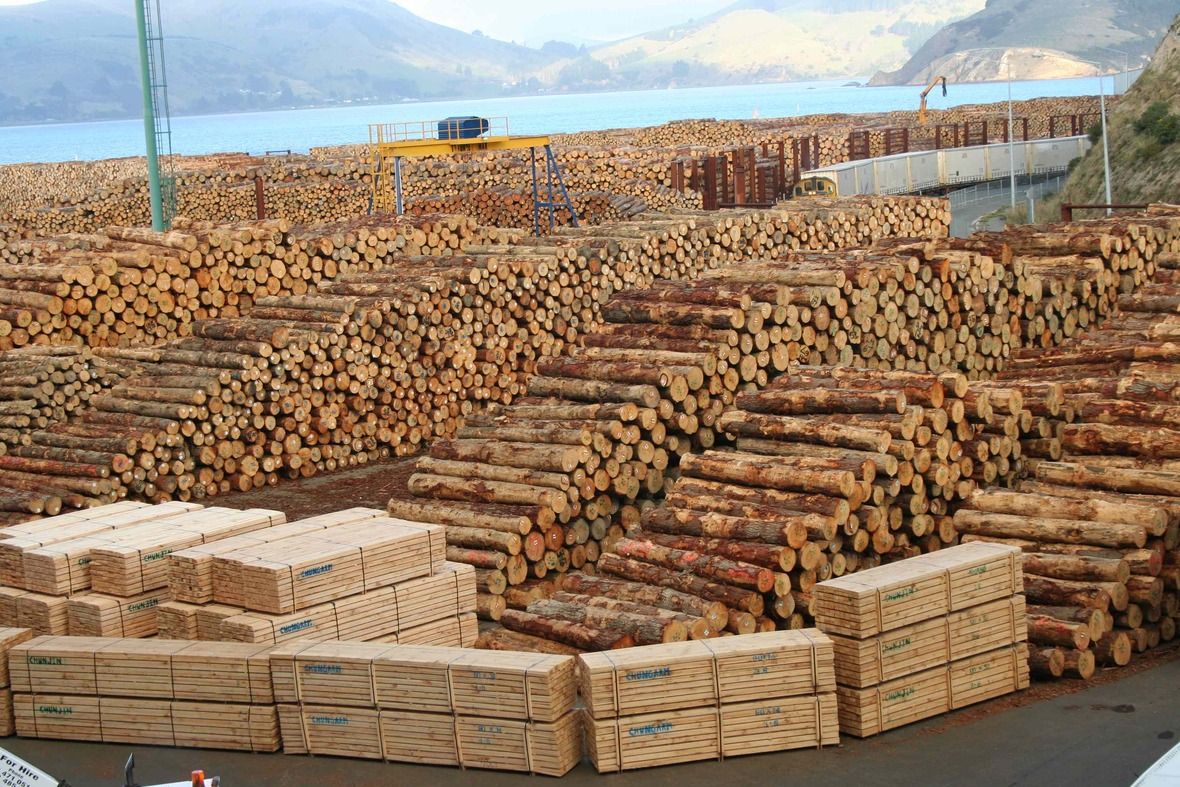 tracking-timber-in-the-supply-chain