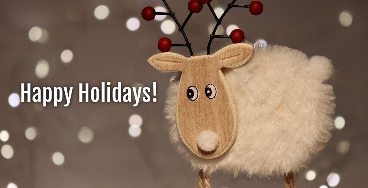 Christmas Banner Reindeer FB