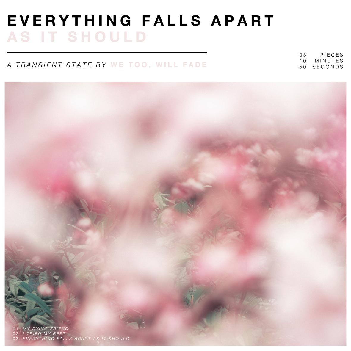 EFAAIS-Cover