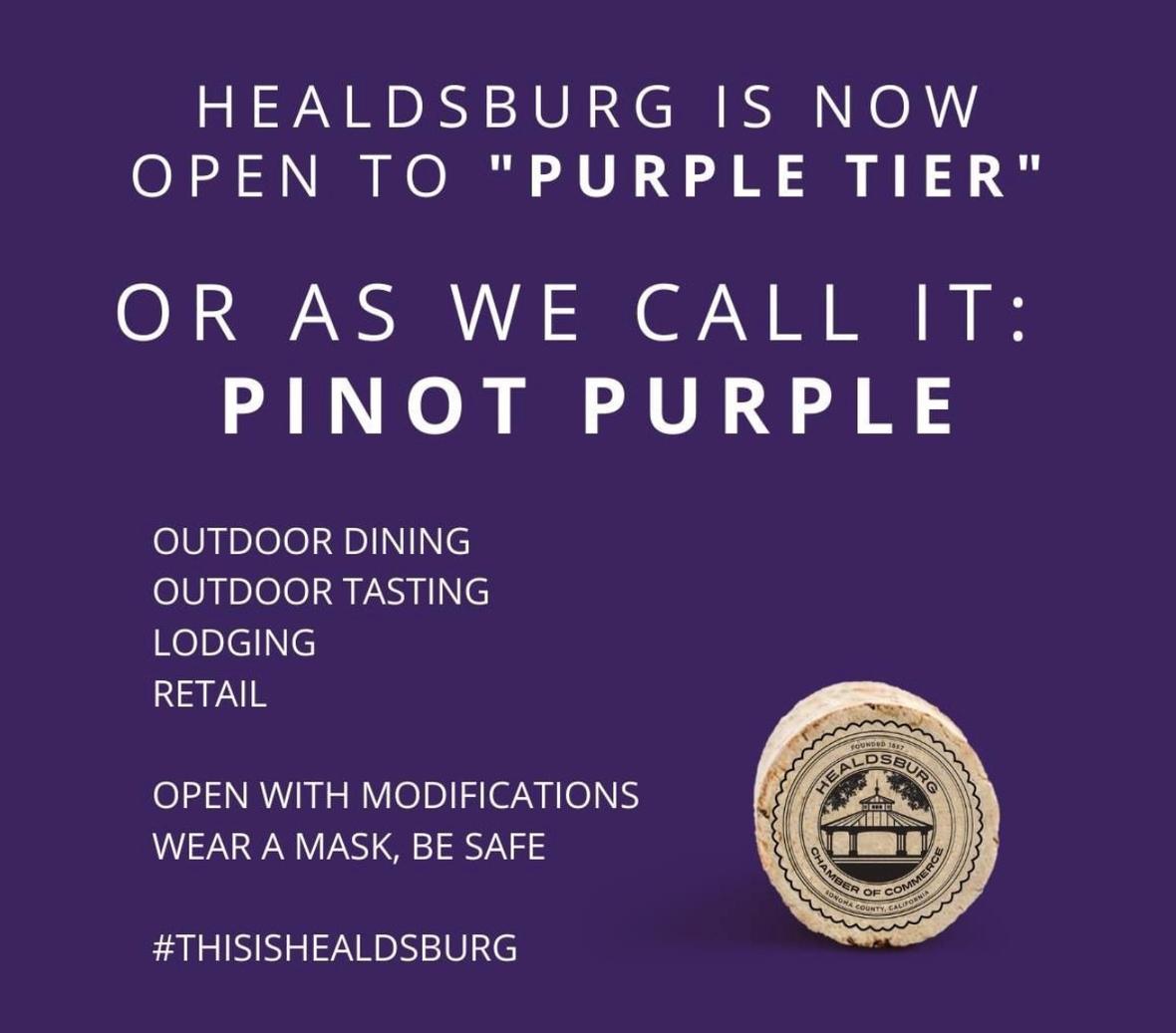 pinot purple