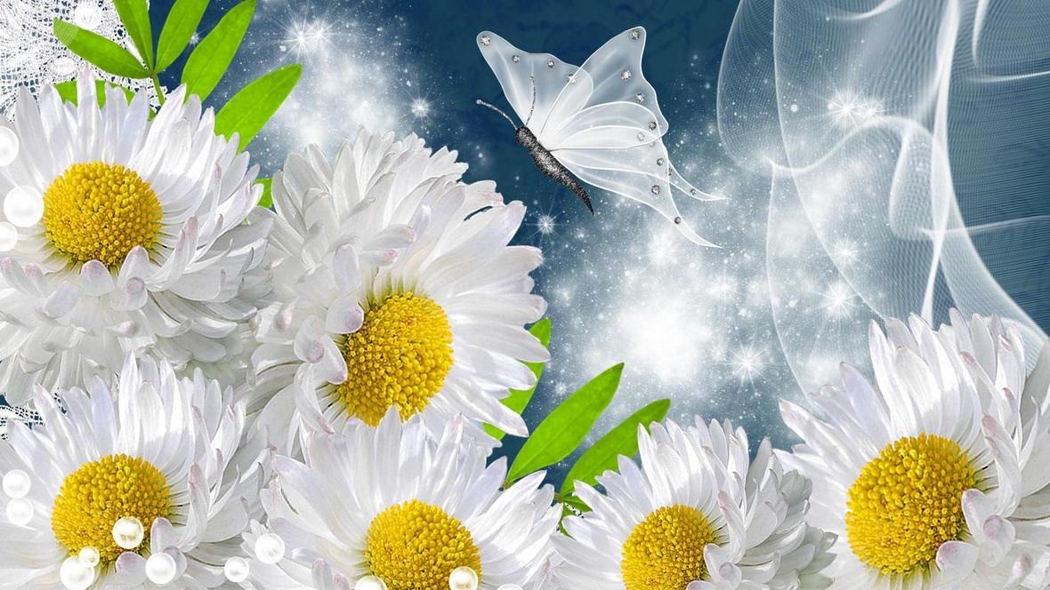Beautiful-sunflower-butterfly