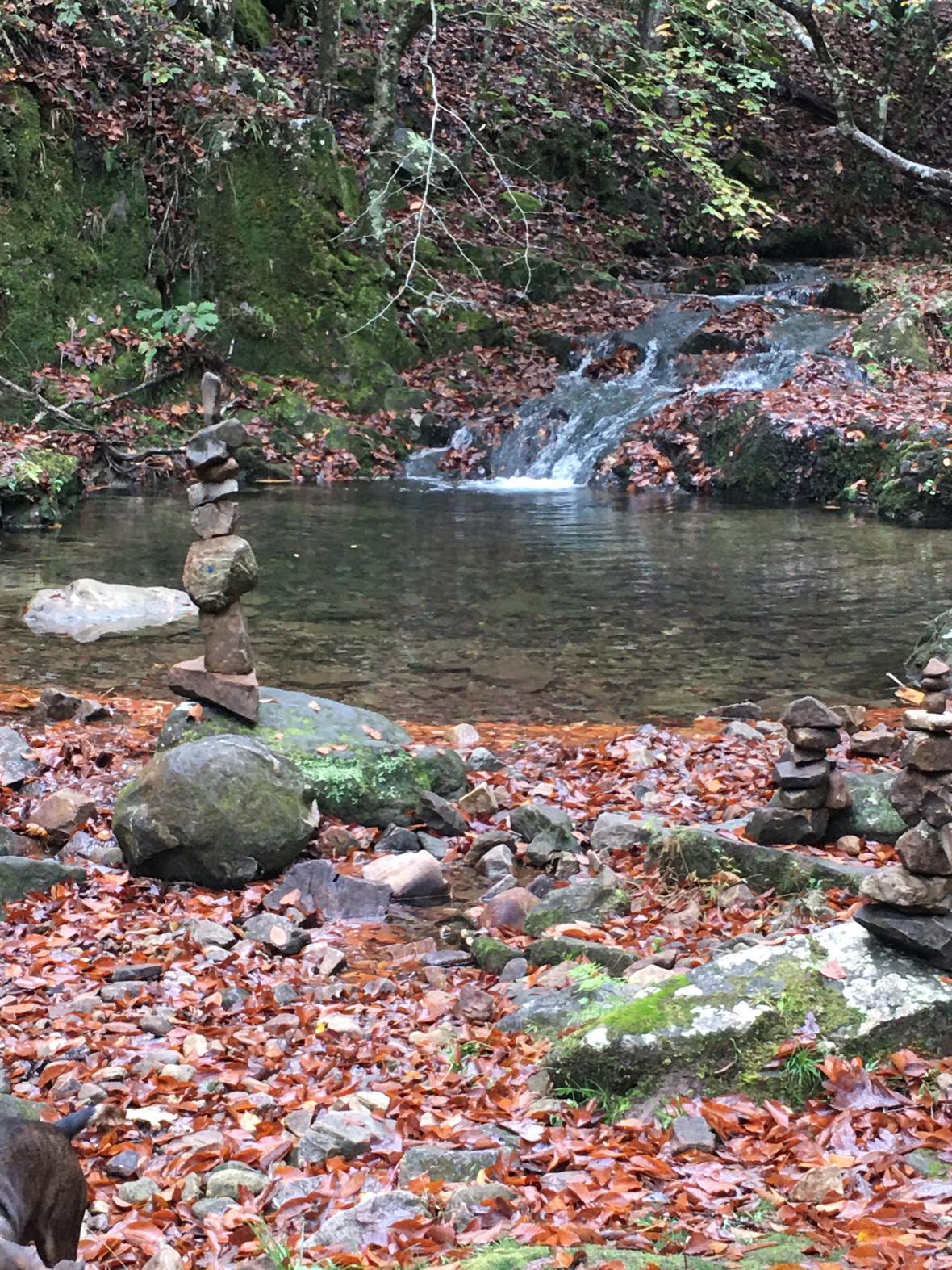 JuneWksp-Stream with water inflow