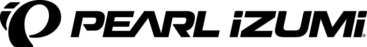 PI Logo Horizontal 1 1