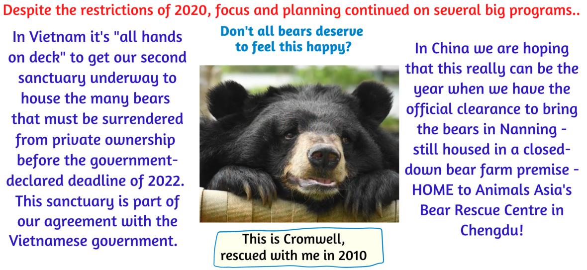 looking ahead 2021