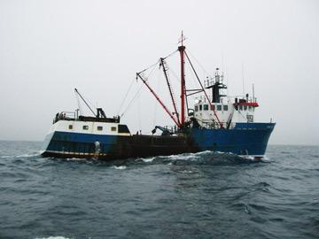 bateau de pêchenn1