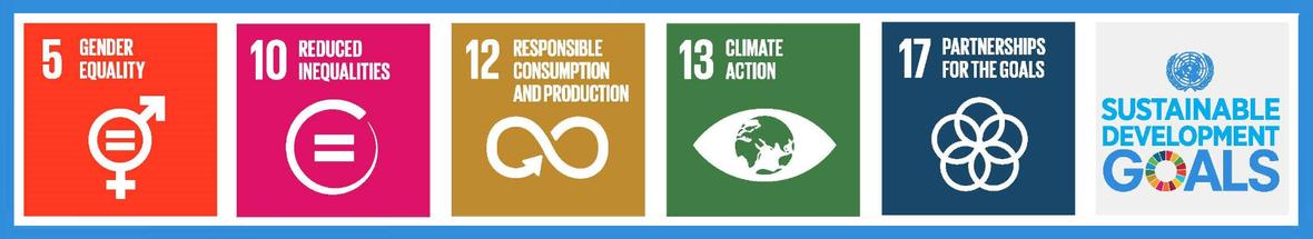 SDG-priorities-visual