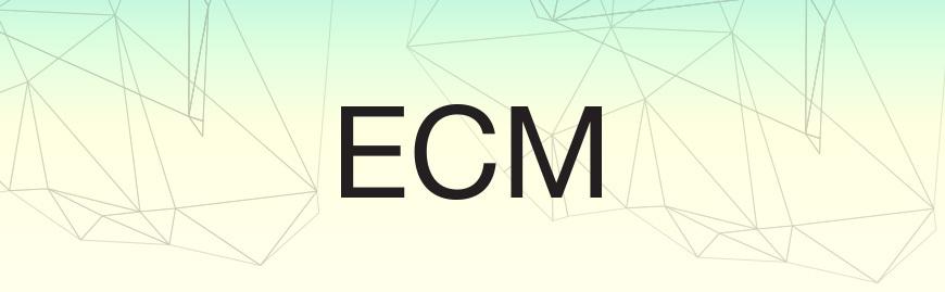 ECM-Leaders-banner