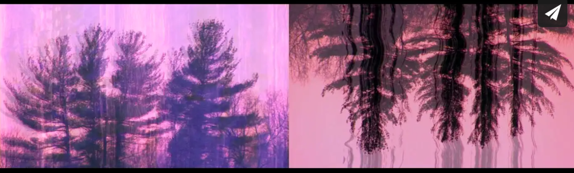 Screen Shot 2021-05-21 at 12.22.07 PM
