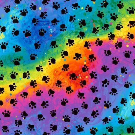 c7486 rainbow 20210603212059