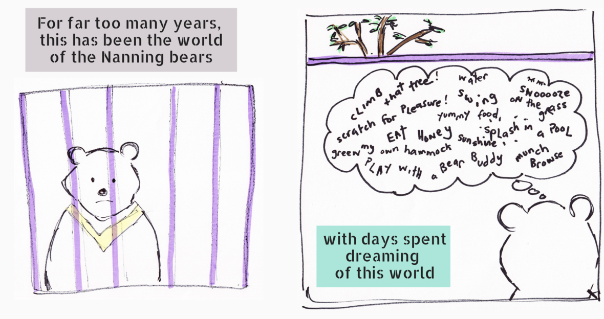 Copy of When a bear dares to dream...
