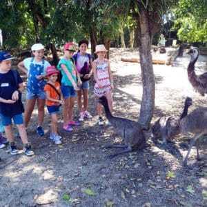 junior-keepers-school-holidays-program-wildlife-habitat-port-douglas-1-300x300