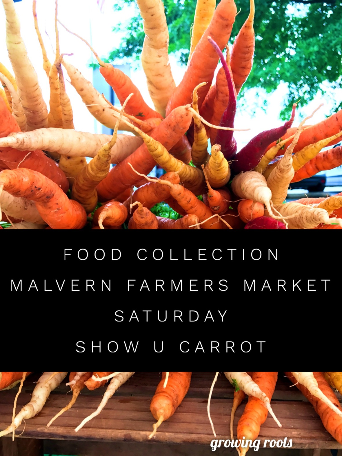 Malvern Food Collect