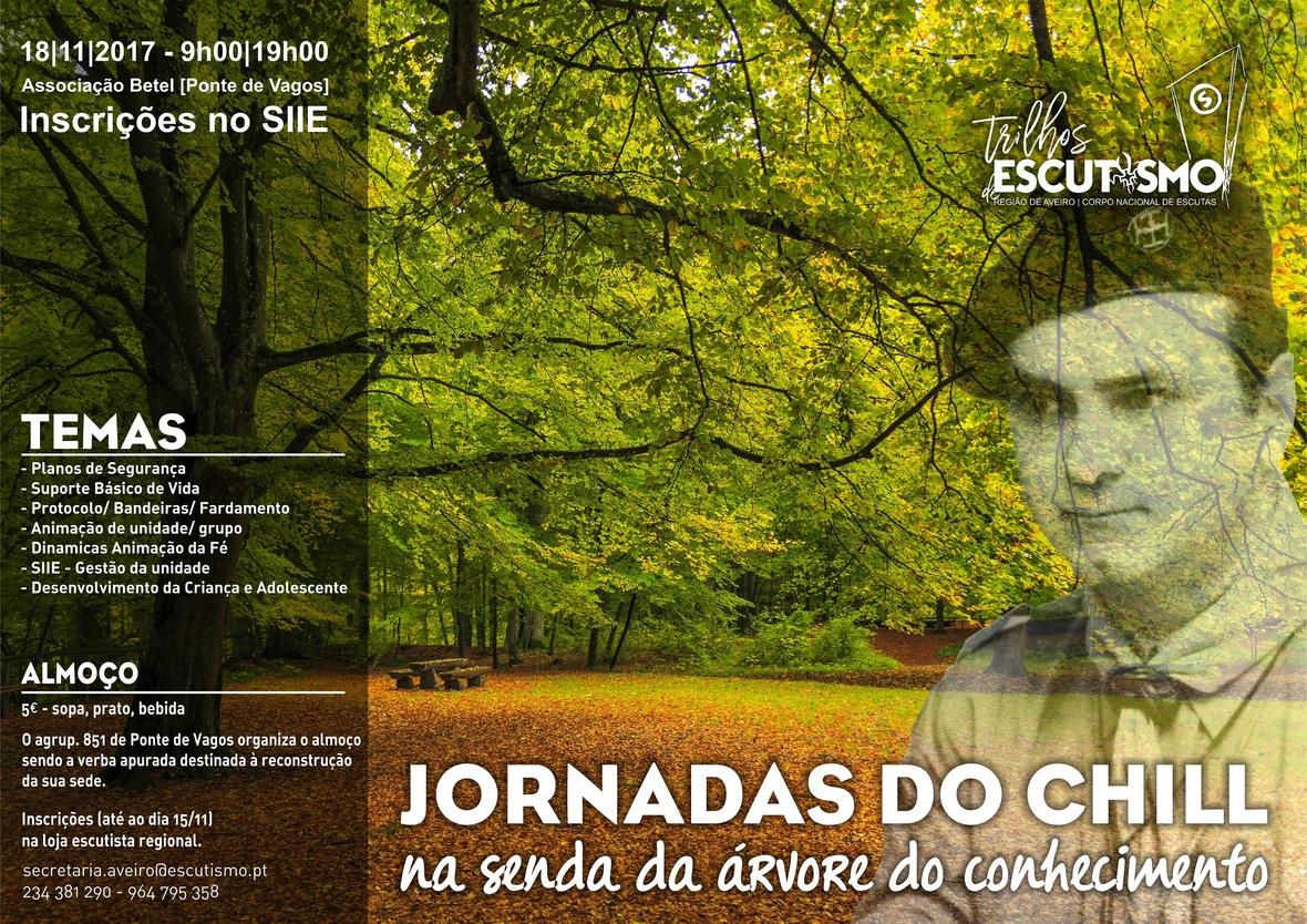 JornadasCHILL cartaz2