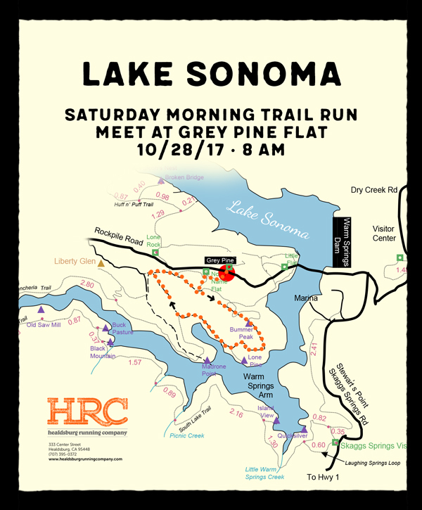 Lake sonoma grey pine newsletter