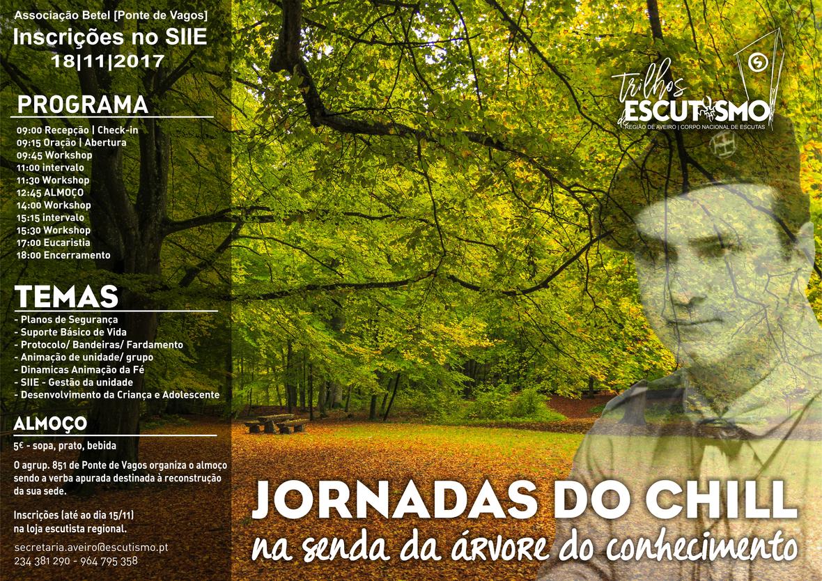 JornadasCHILL cartaz3