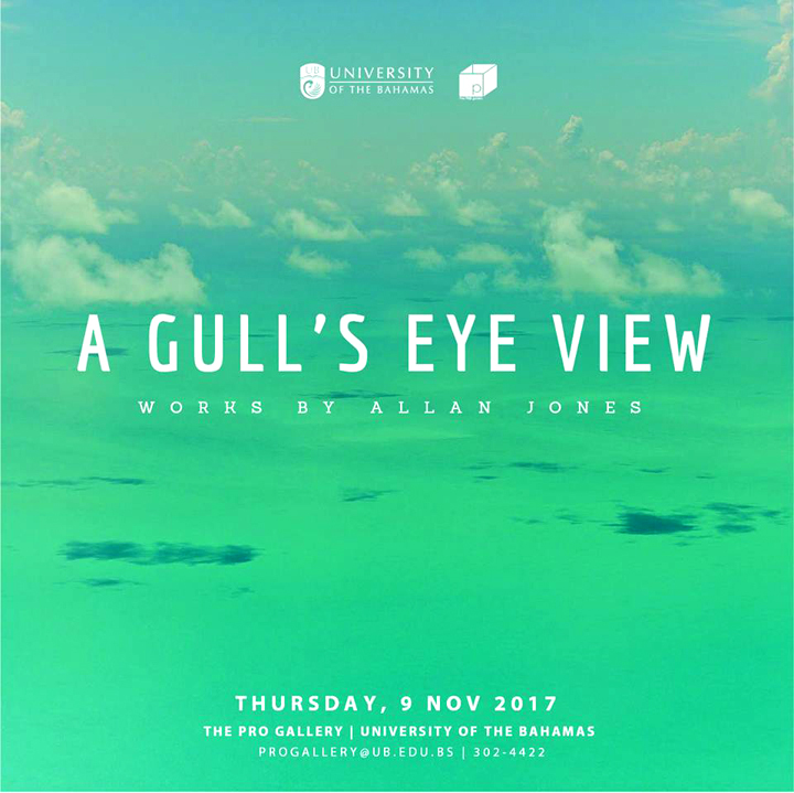 Gull s-Eye-View