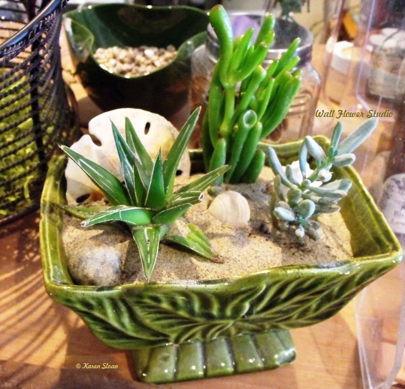 Seaside succulent dish garden fb