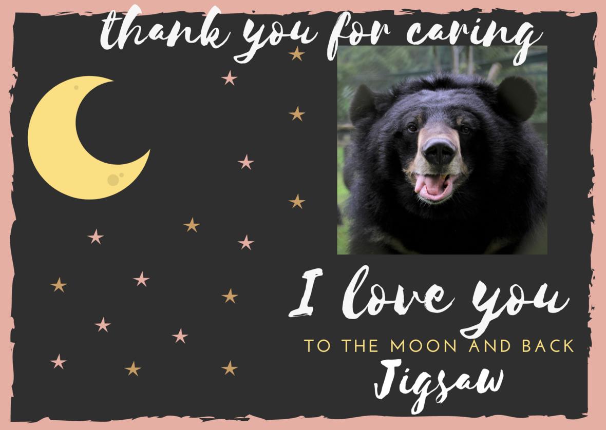 Moon Bear thank you