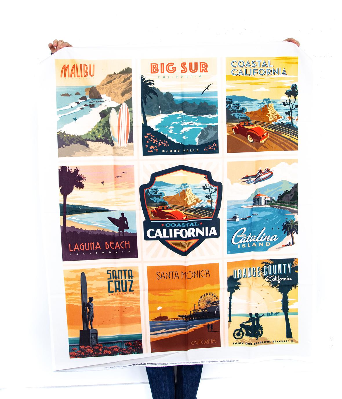 California Beaches Panel