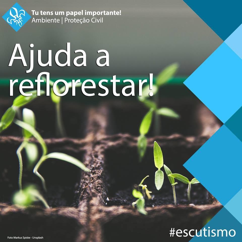 ReflorestarPortugal