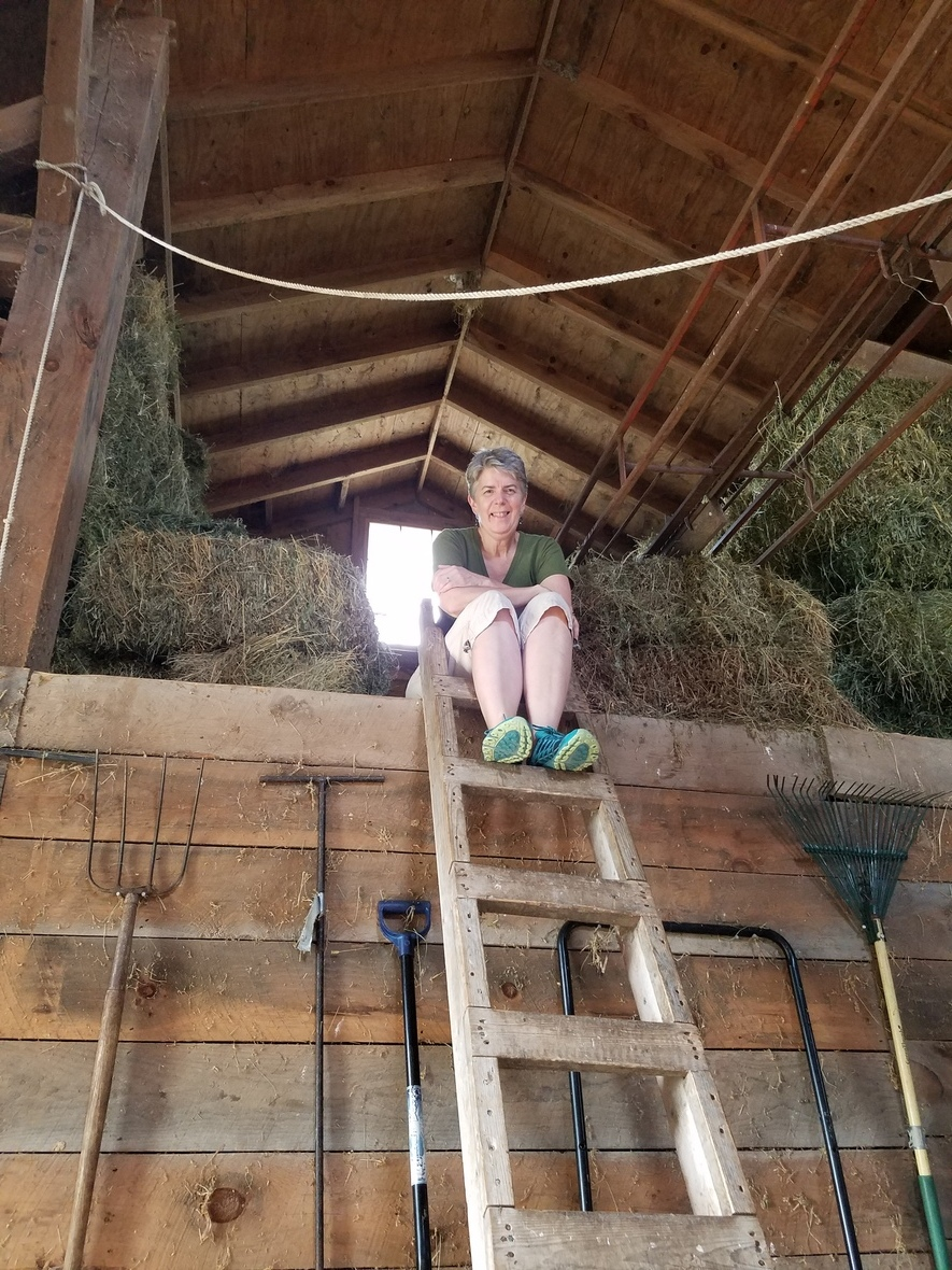 Laura Barn eaves with Hay AOLC Sept 2017