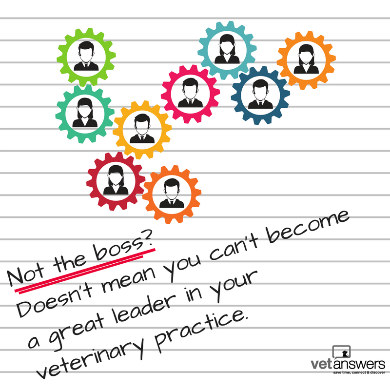 Not the boss - Doesn t mean you can t become a great leader in your veterinary practice