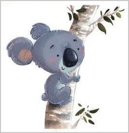 fotolia koala