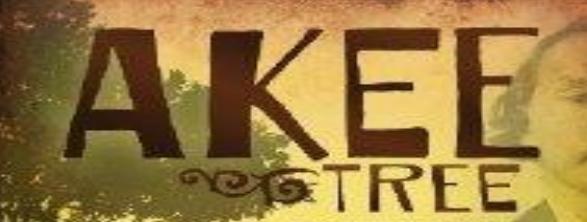 Akee Tree Image
