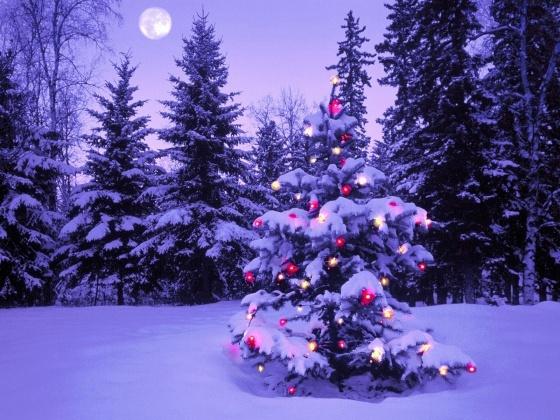 www.PicsDesktop.com 144