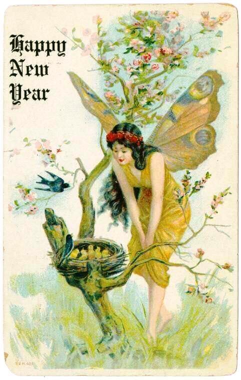 Happy New Year Fairy