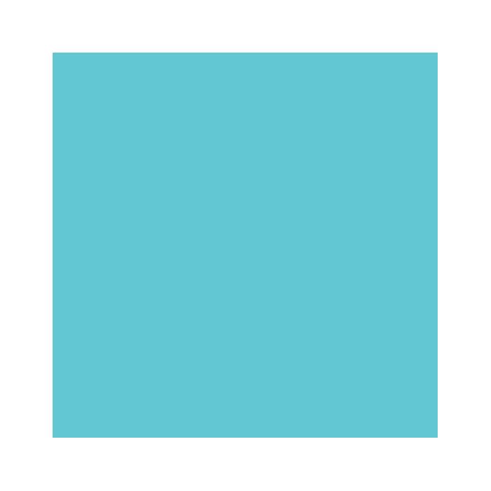 minaya instagram social icon