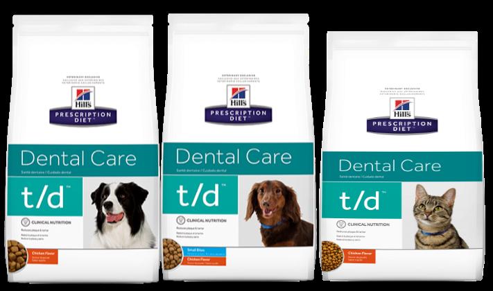dental-TDdog