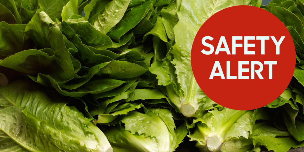 1515096763-1515087999-index-romaine-lettuce-safety-alert