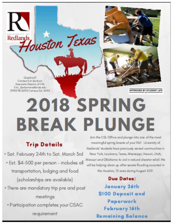 Spring Break Plunge