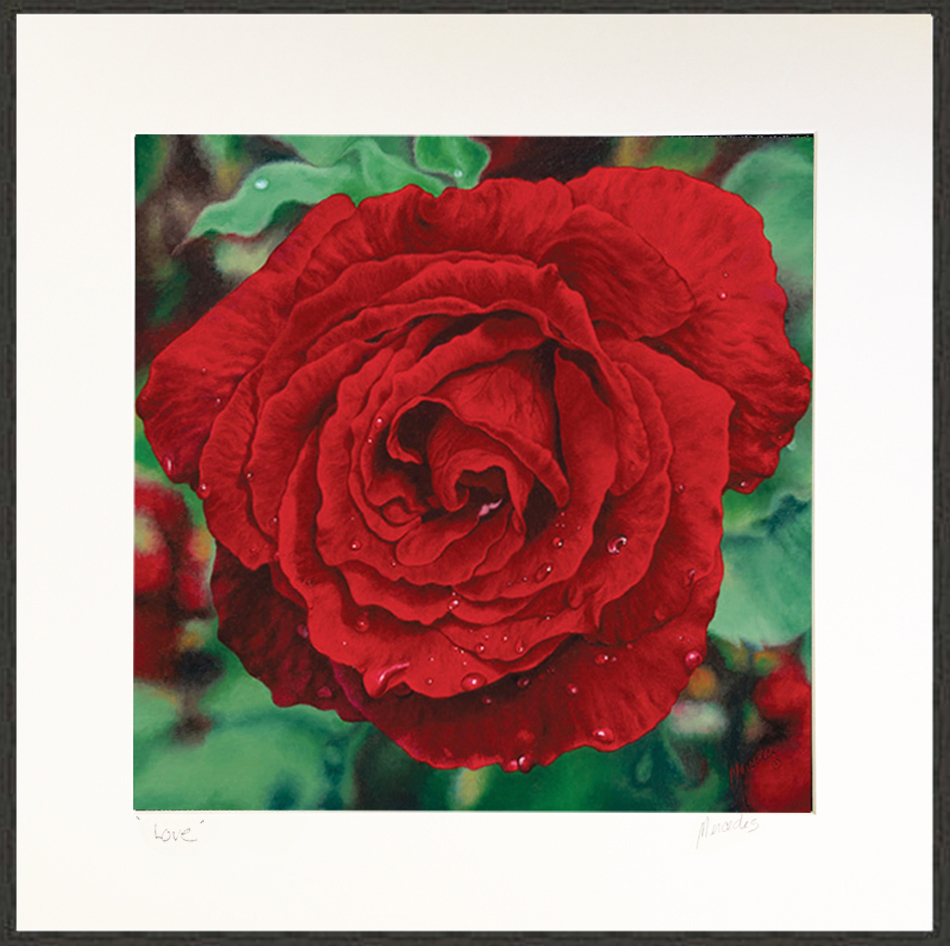 RedRoseLovePrint framed XLG4