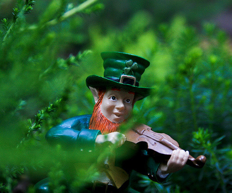 leprechaun on fiddle