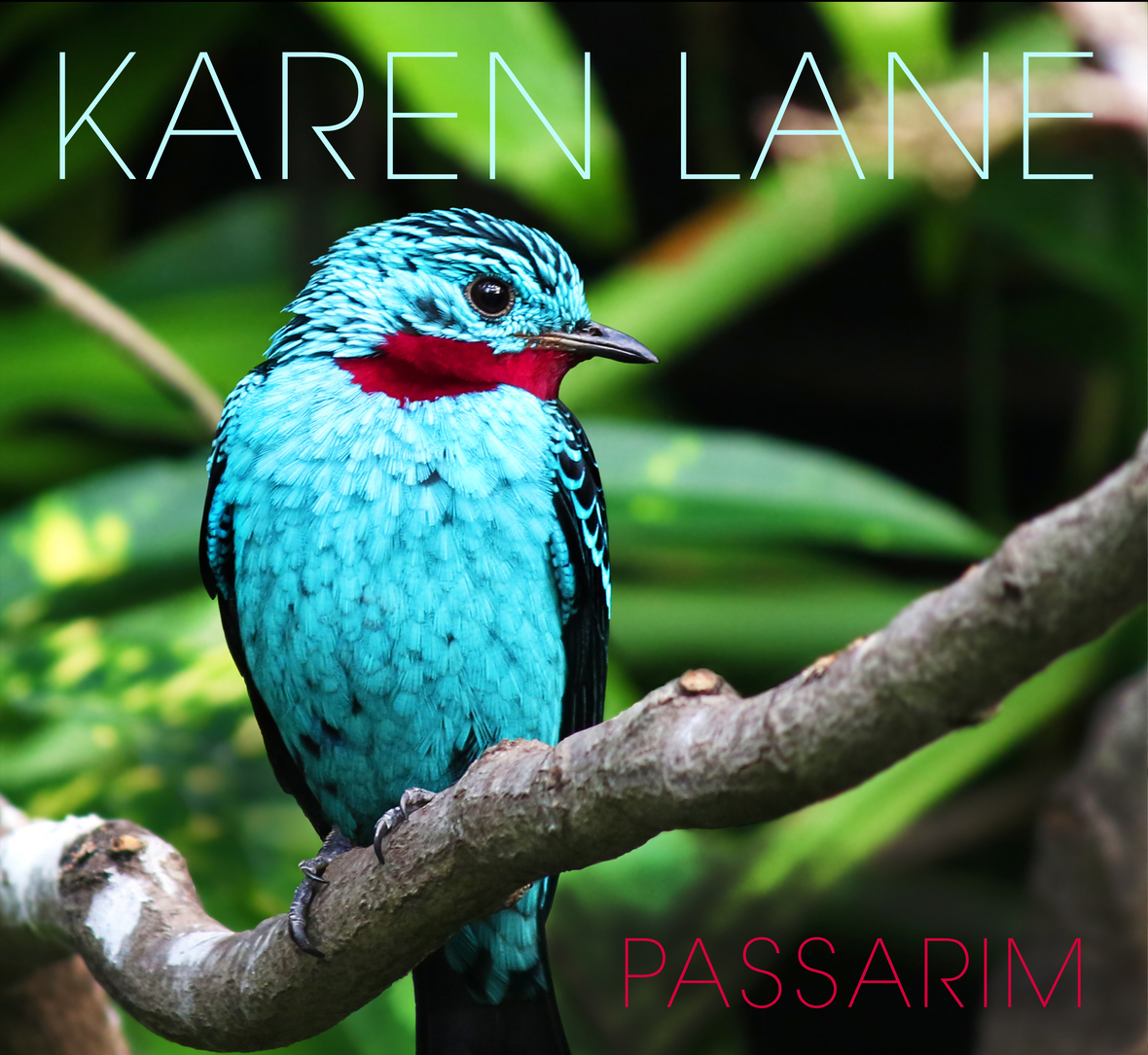 Passarim cover