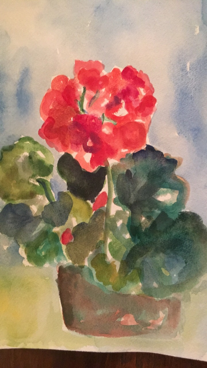 anne anderson watercolor