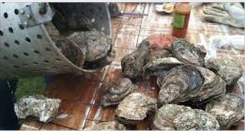 Chapin Oyster Roast - pic from Facebook events page