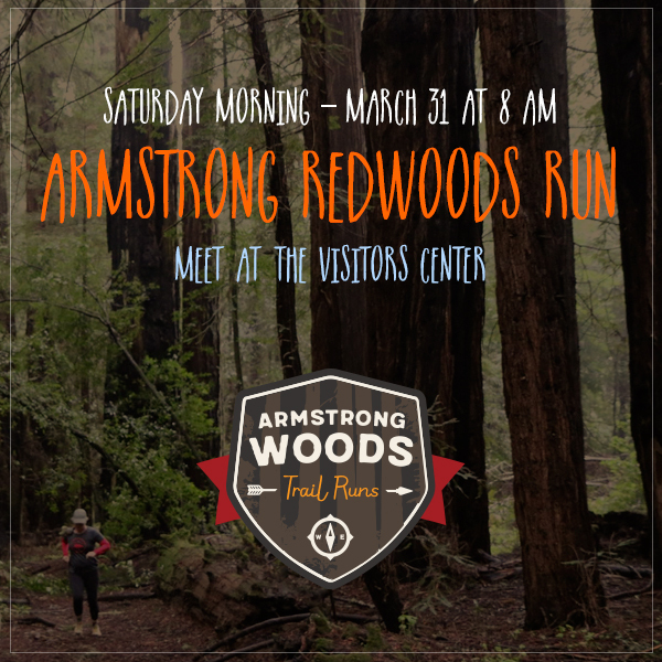 armstrong run instagram
