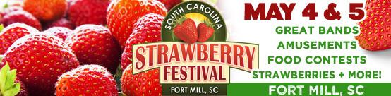 strawberry-fest-fort-mill  1