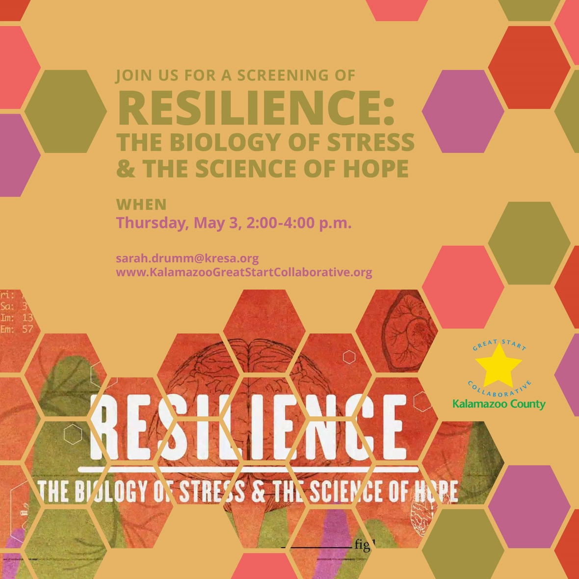 Resilience Social
