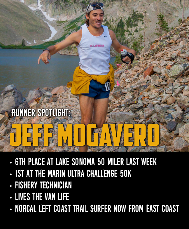 Jeff Mogavero- spotlight
