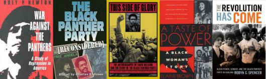top-10-black-panther-books