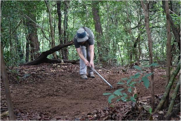 Rachel Rosenbloom Sand Traps