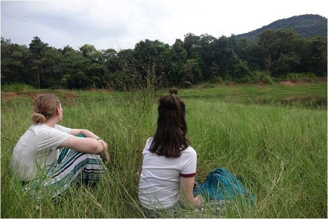 Sophie Omer Mcwalter Observing Elephants
