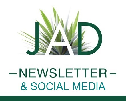 JA-Banner square newsletter socme